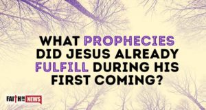 What Prophecies Did Jesus Already Fulfill During His First Coming